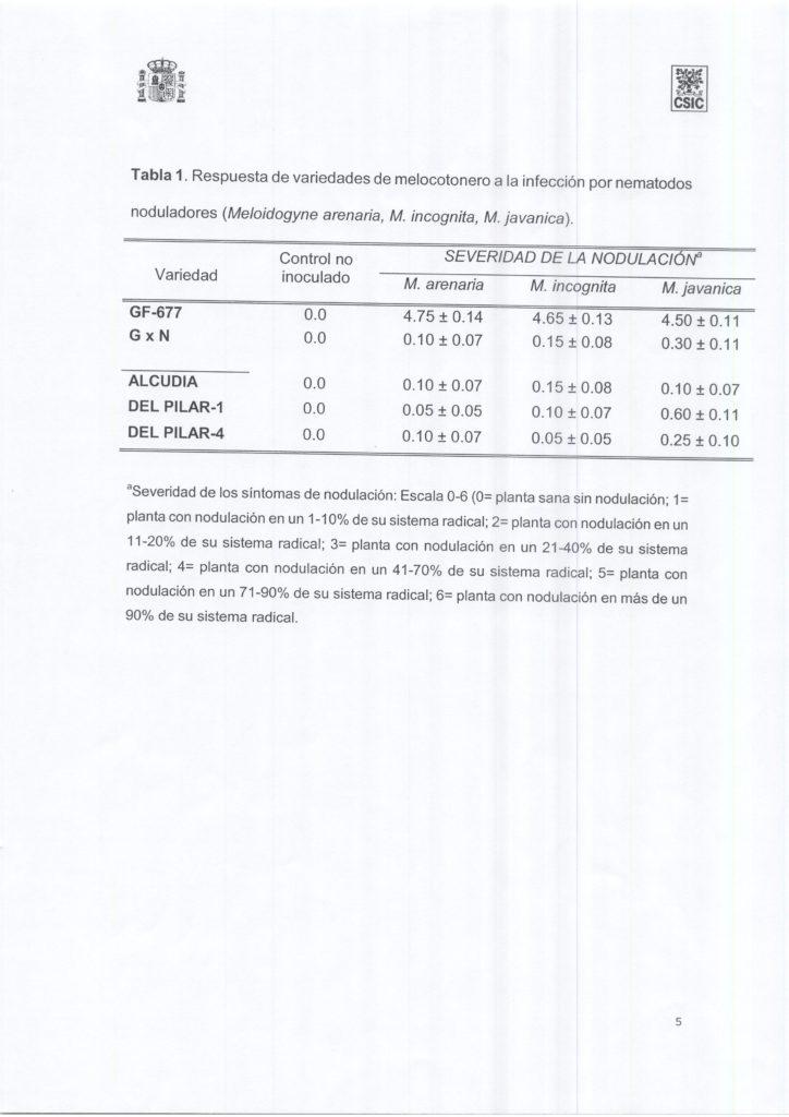 evaluacion-nematodos-patrones-melocotonero-005