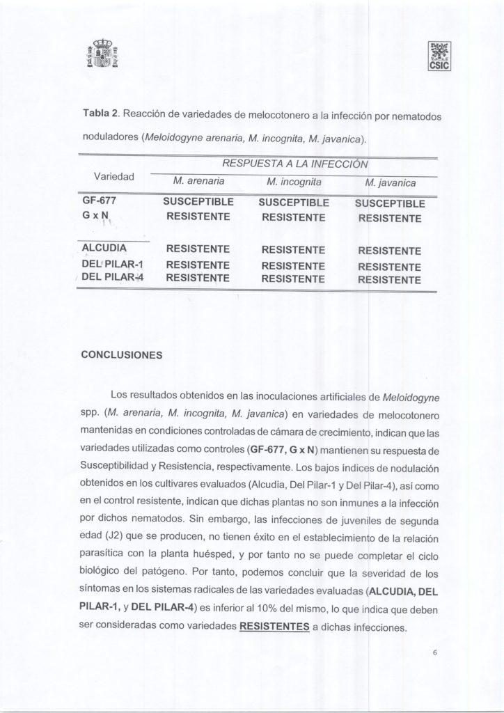 evaluacion-nematodos-patrones-melocotonero-006