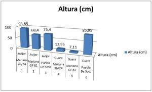 grafico_alturas